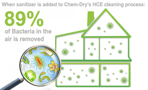 Chem-Dry carpet cleaning removes bacteria in the air